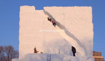 Snow Sculpture Expo 2021