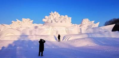 2021 Snow Sculpture Art Expo