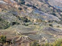 Bada Rice Terraces