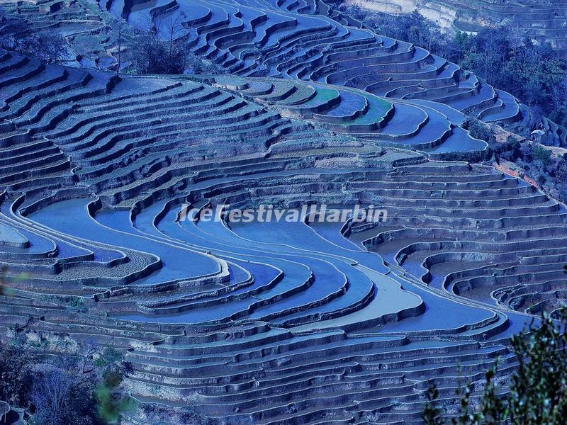 Yuanyang Bada Rice Terraces in Winter