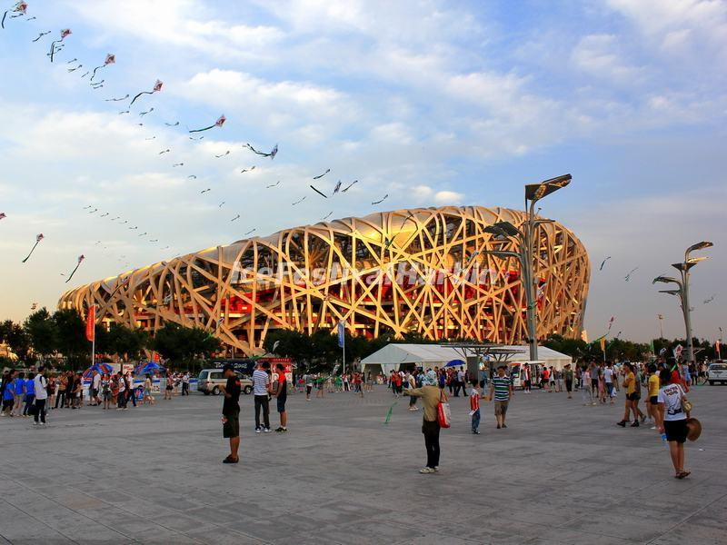 Beijing Bird's Nest