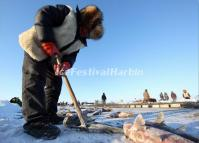 A Fisherman is Drilling Ice Hole on Chagan Lake