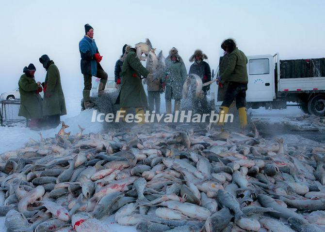 Winter Fishing Festival in Chagan Lake