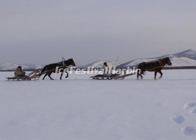 Horse Sleighing in China's Snow Town