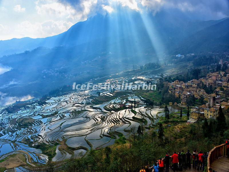 Yuanyang Duoyishu Terraced Fields