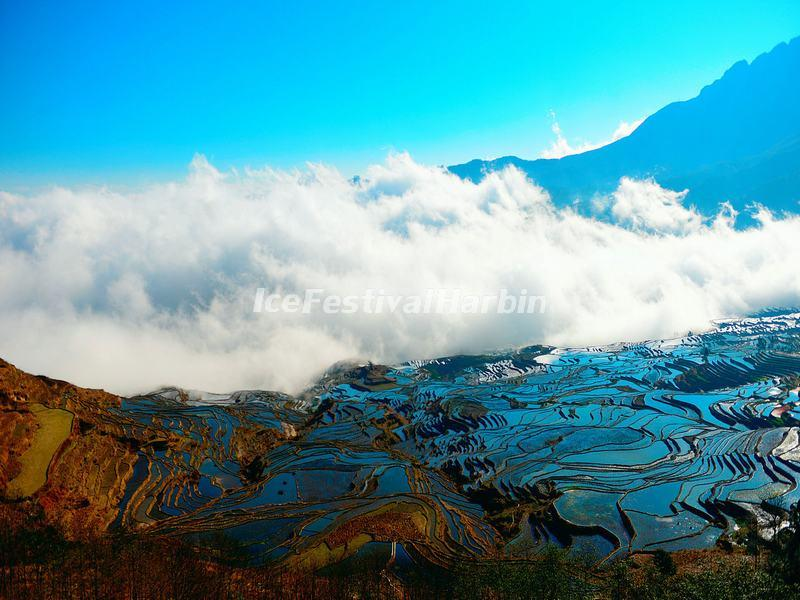 The Fog Over the Duoyishu Rice Terraces