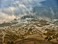 Duoyishu Rice Terraced Fields