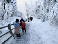 Emei Mountain Snow