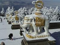 Mount Emei Snow