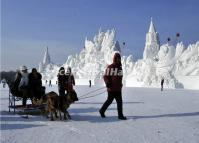 A Man and His Sled Dogs Walk in Front of a Giant Snow Sculpture in Harbin