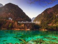 The Five Flower Lake in Jiuzhaigou Valley