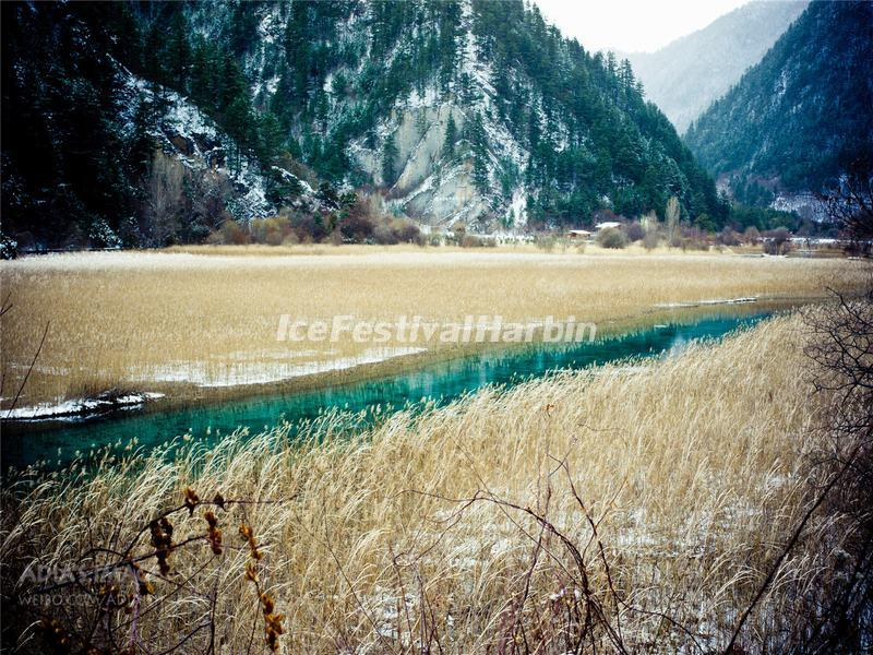 Jiuzhaigou Valley Reed Lake