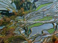 The Honghe Hani Rice Terraces in Laohuzui, Yuanyang