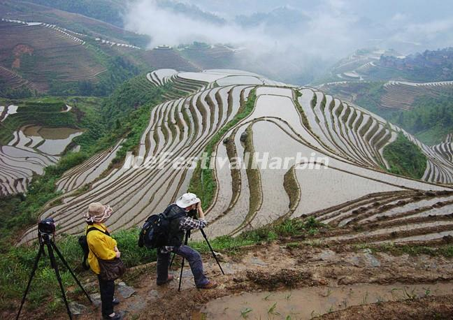 The Flooded Longsheng Rice Terraces
