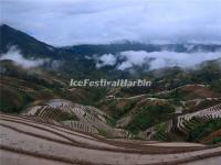 Longsheng Rice Terraces in Mist