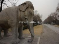 Ming Tombs Sacred Way Stone Carving-Elephant
