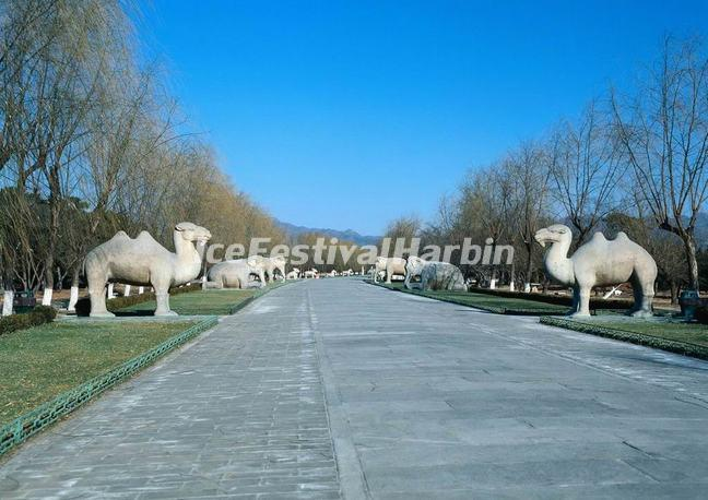 The Sacared Way of Beijing Ming Tombs