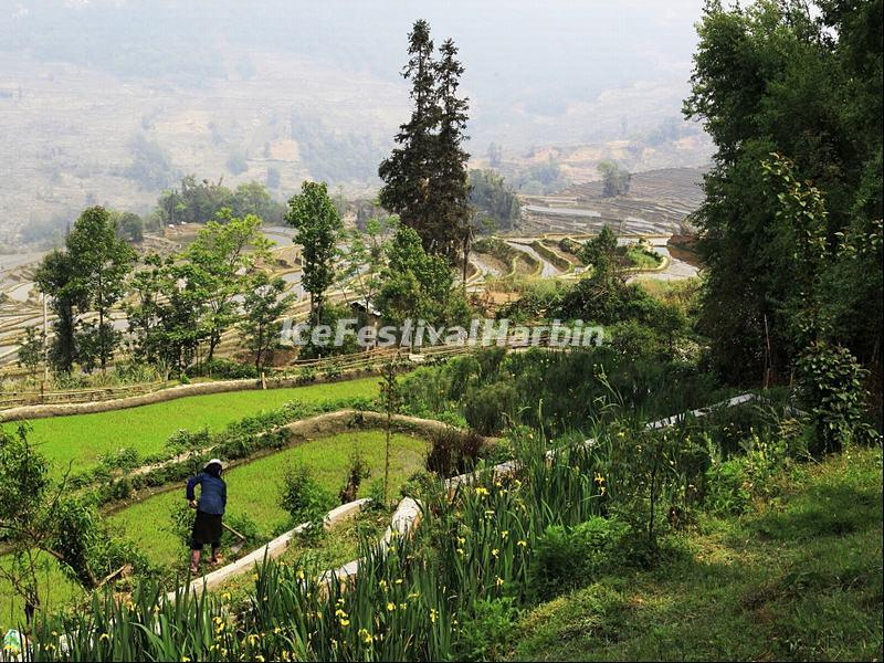 Qingkou Folk Village Scenery