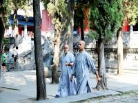 Shaolin Temple Foreign Monks