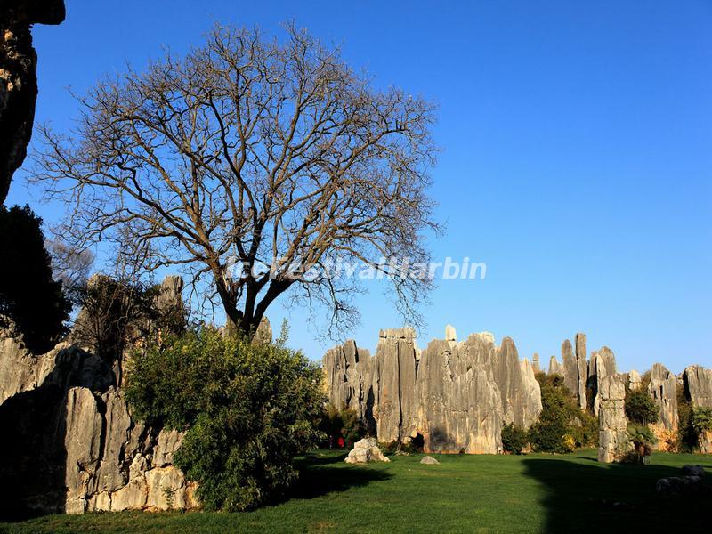 Kunming Stone Forest Scenic Area