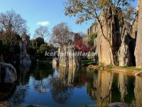 Kunming Stone Forest in Autumn