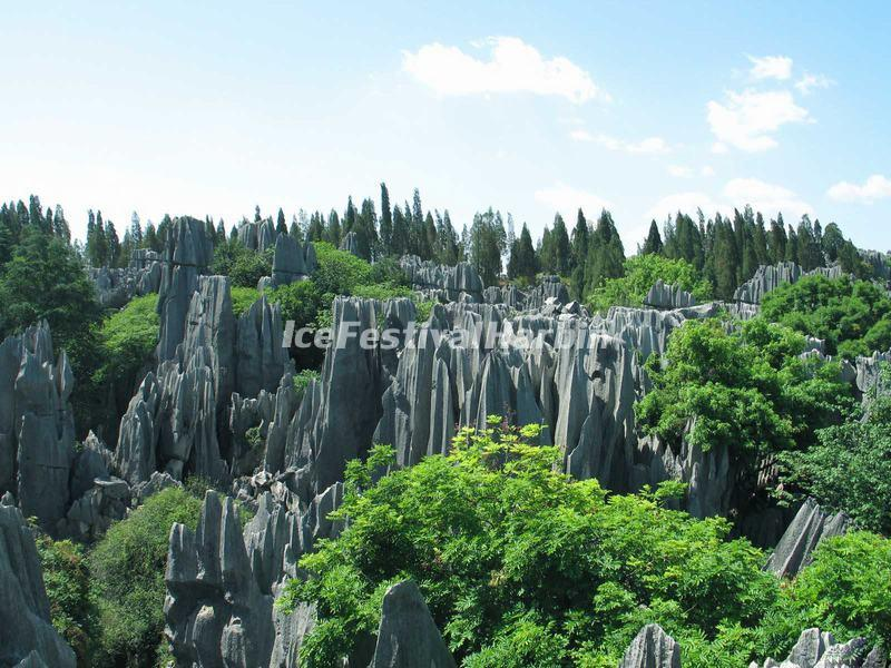 Kunming Stone Forest Scenery
