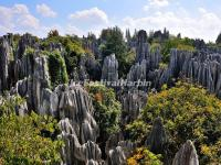 Yunnan Stone Forest Landscape