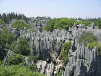 The Karst Stones in Kunming Stone Forest