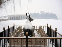 Summer Palace Buffalo in Snow