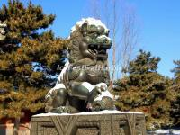 The Stone Lion in Summer Palace