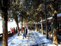 Tourist Visit Summer Palace in Winter