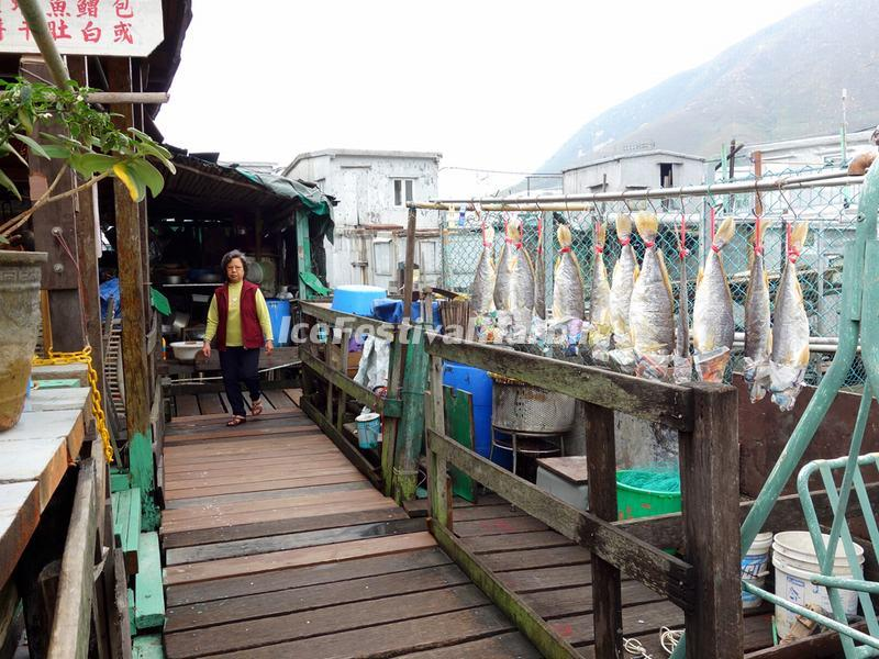 Drying Salt Fish Caught in the Waters of Tai O Fishing Village