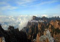 Yellow Mountain - Image_16