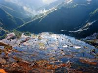 "<a href=""http://www.icefestivalharbin.com/photo-p34-1982-yuanyang-rice-terraces-winter.html"">Yuanyang Rice Terraces, Winter</a>"