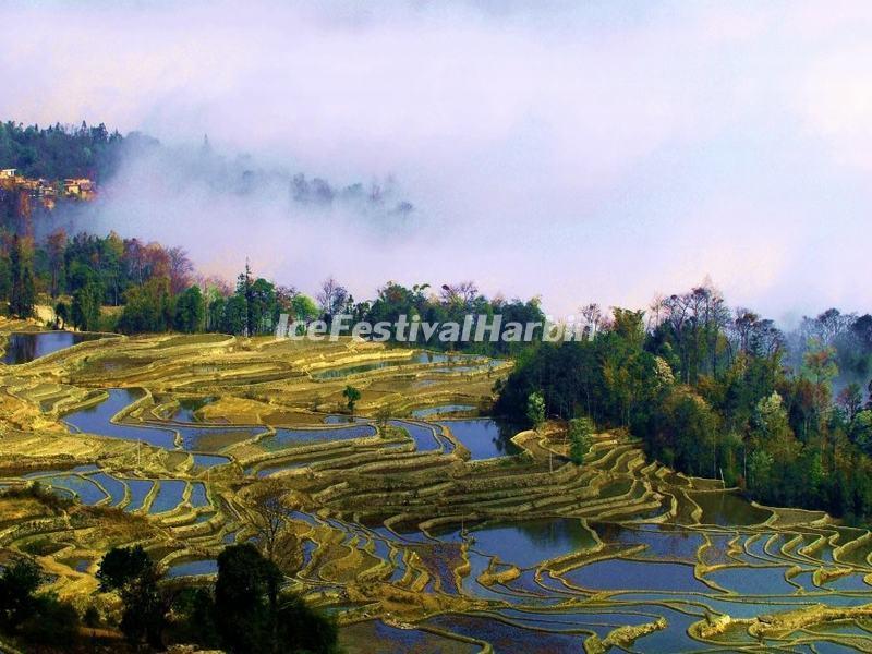 Yuanyang Rice Terraces Yuanyang Rice Terraces Photos