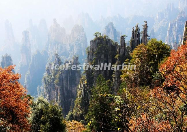 Zhangjiajie National Forest Park Autumn