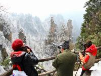 Tourists in Zhangjiajie National Forest Park