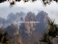 Zhangjiajie National Forest Park Landscape