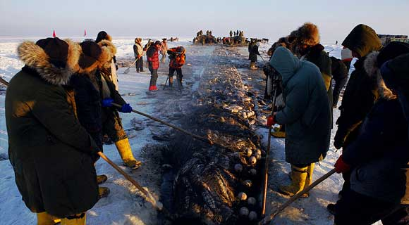 4-day Harbin Ice Festival & Chagan Lake Winter Fishing Tour